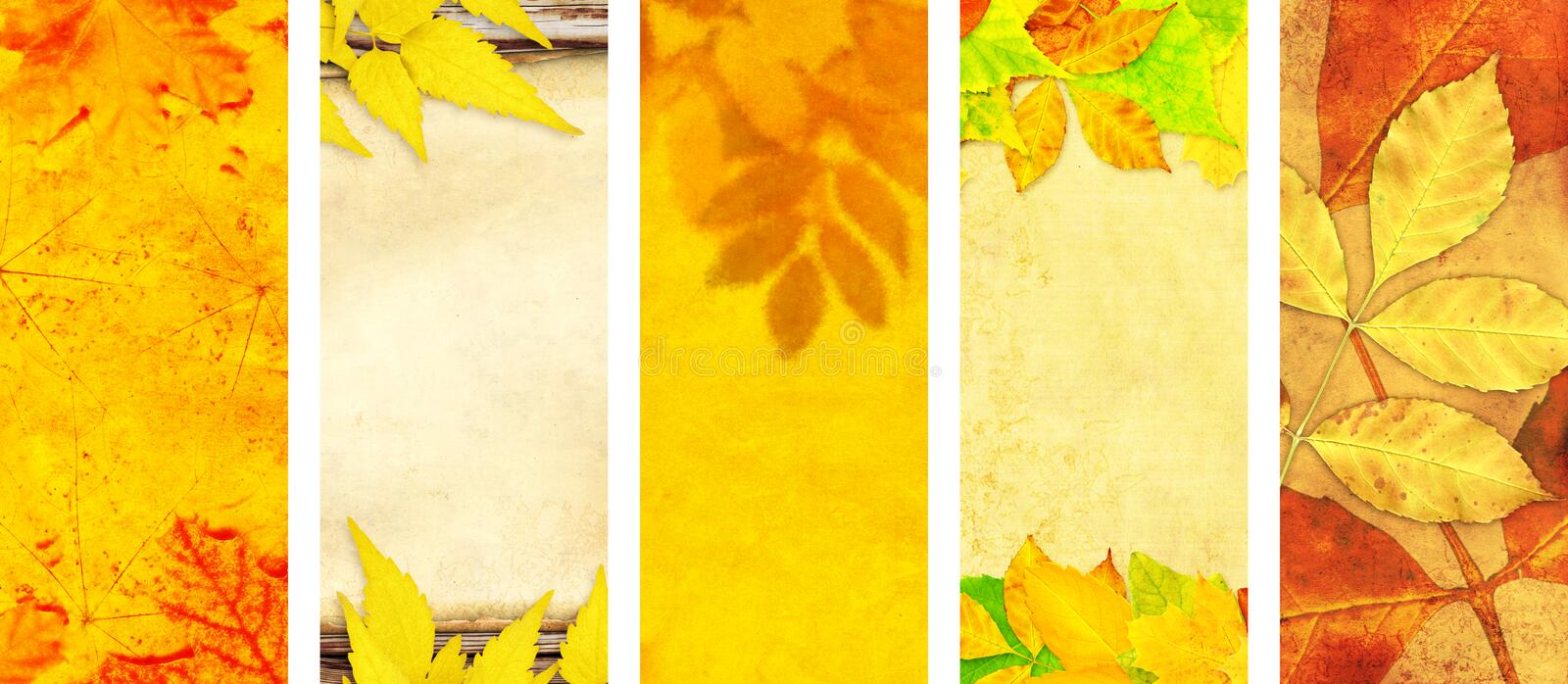 Set of vertical or horizontal autumn banners. Collection of seasonal background with old paper texture and autumn leaves. Mock up template. Copy space for text royalty free stock photography