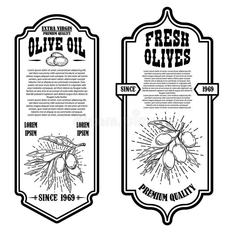 Set of vintage olive oil flyer templates. Design element for logo, label, emblem, sign, badge. vector illustration