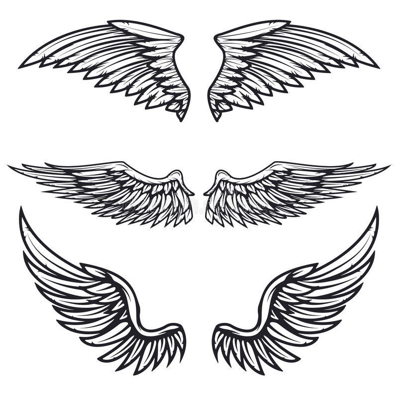 Set of vintage vector wings isolated on white background. Design vector illustration