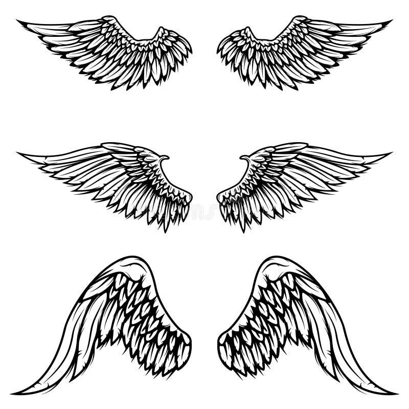 Set of vintage vector wings isolated on white background. Design. Elements for logo, label, emblem, sign, brand mark. Vector illustration vector illustration
