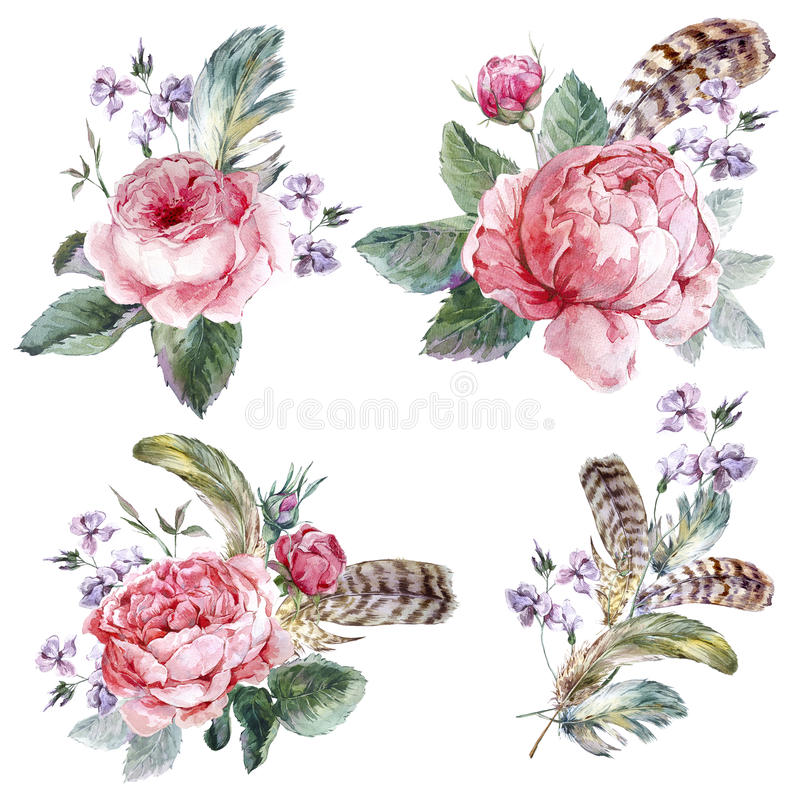 Set vintage watercolor bouquet of roses feathers stock illustration