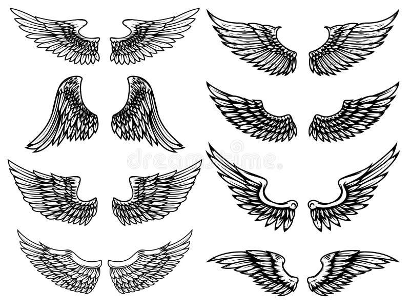 Set of vintage wings illustrations isolated on white background. Design element for logo, label, emblem, sign. Vector illustration royalty free illustration