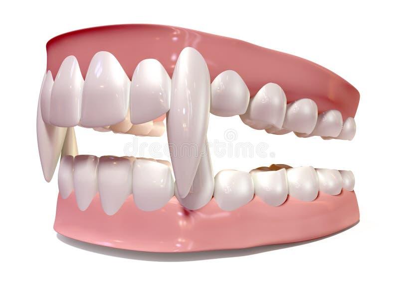 Wampirów Fałszywi zęby Ustawiający Odizolowywającymi zdjęcia stock