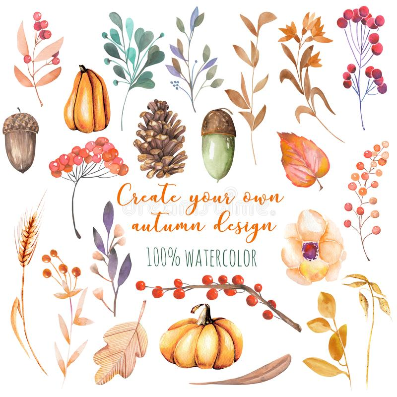 Set of watercolor autumn plants: pumpkins, fir cones, wheat spikes, yellow leaves, fall berries, acorns. Hand painted isolated on a white background royalty free illustration