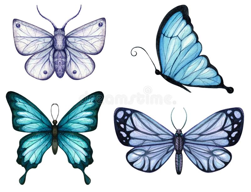 Set of watercolor butterflies and moths of blue tones. Isolated vector illustration