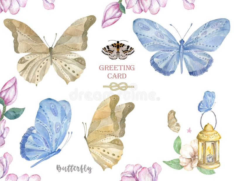 Set of watercolor butterfly. Vintage summer isolated spring art. Watercolour illustration. design wedding card, insect, flower stock illustration