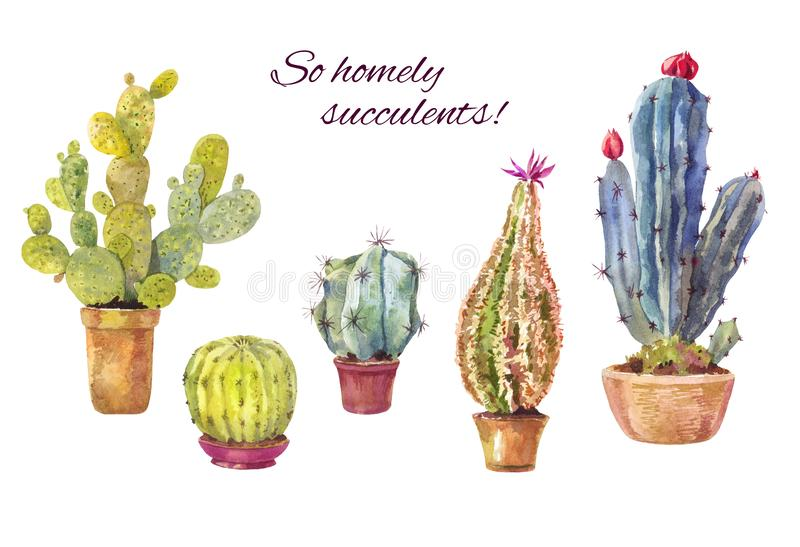 Set of watercolor cacti on white. Set of watercolor cacti in pots. Homely illustration suitable for decoration DIY progect royalty free illustration