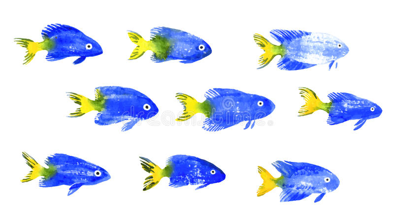 Set of watercolor discus fish stock illustration