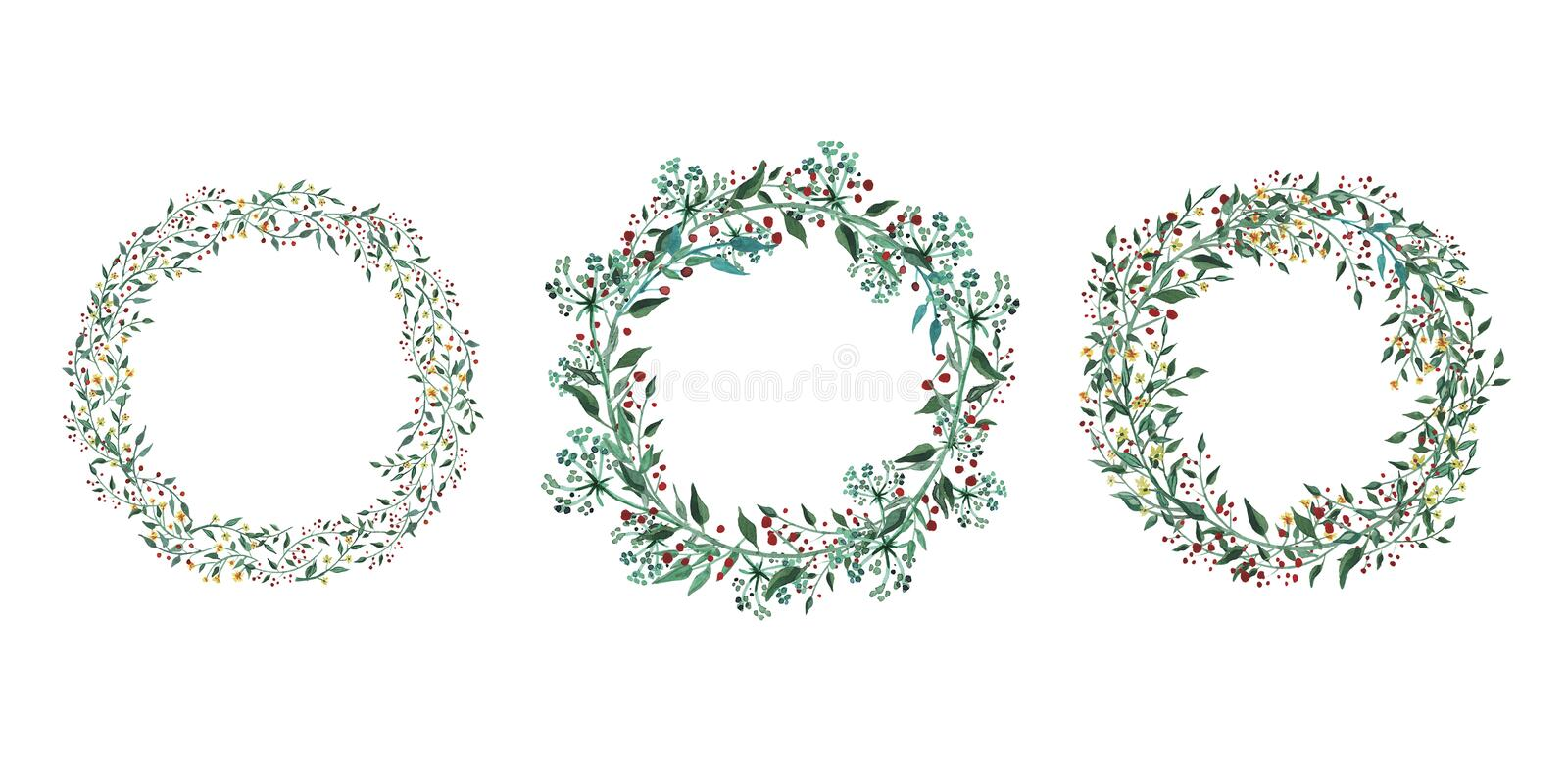 Set of watercolor flowers, leaves, branches, isolated on white. royalty free illustration