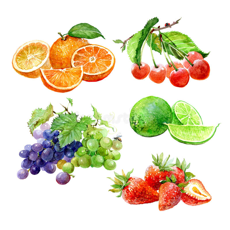 Set of watercolor fruits orange, cherry, lime, lemon, grape, strawberry isolated stock illustration