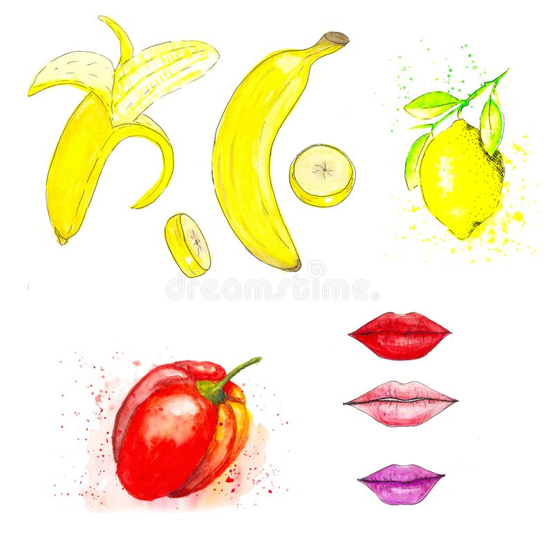 Set of watercolor hand drawn pictures. Yellow, ripe bananas, whole and polished. Also sliced banana. Lemon hanging on a. Set of watercolor cards and hand drawn royalty free illustration
