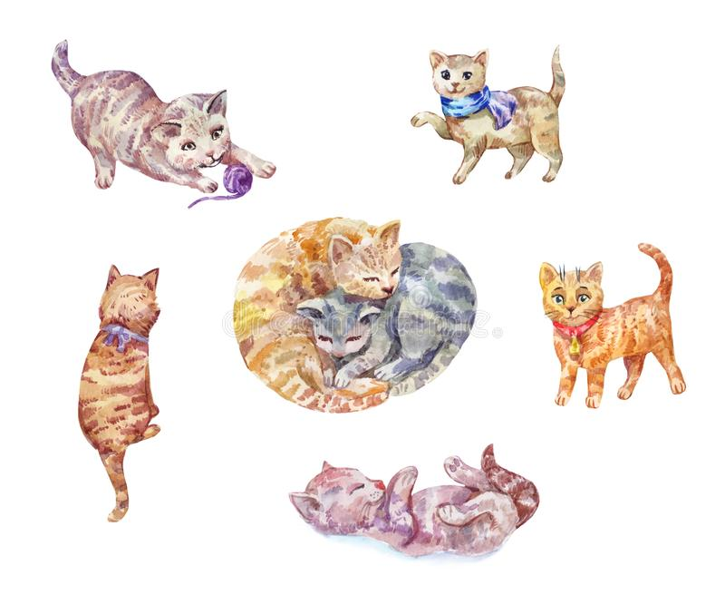 Set of watercolor kittens. Cute pets. vector illustration