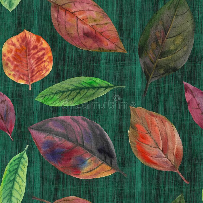 Set of watercolor leaves. seamless pattern royalty free illustration