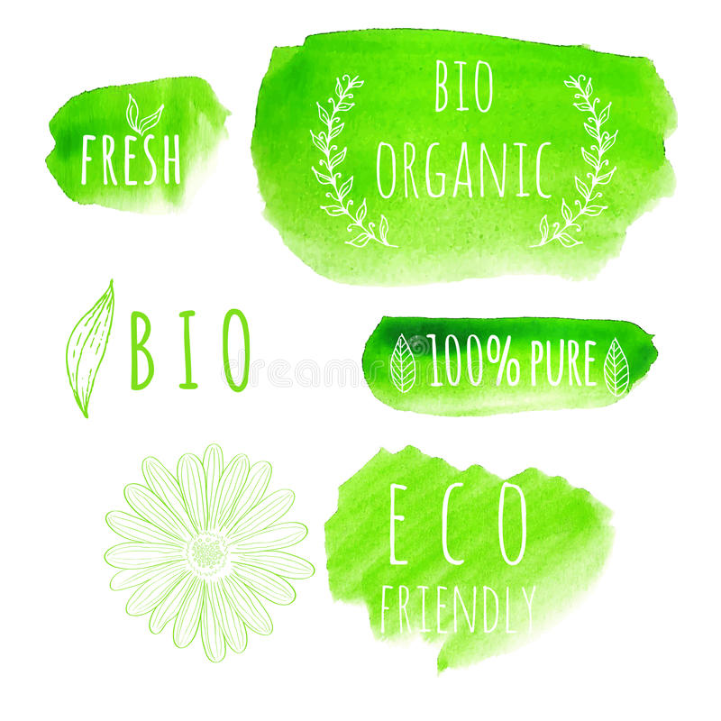 Set of watercolor organic food labels. Eco product. Badges and elements. Vector illustration for your design stock illustration