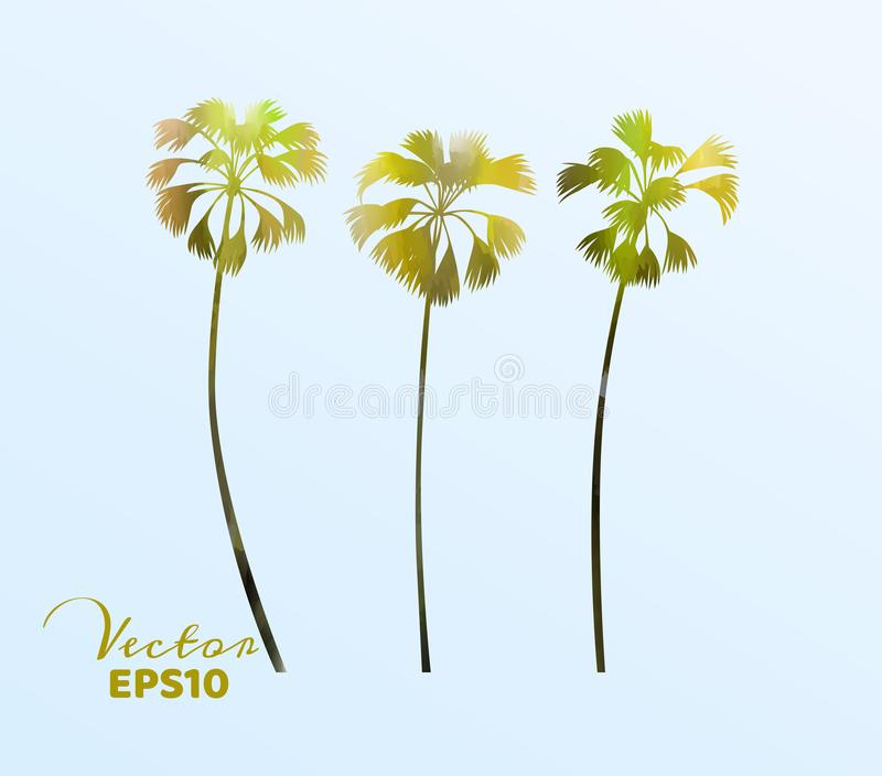 Set of watercolor palm trees . Coconut plant isolated. Vector illustration royalty free illustration