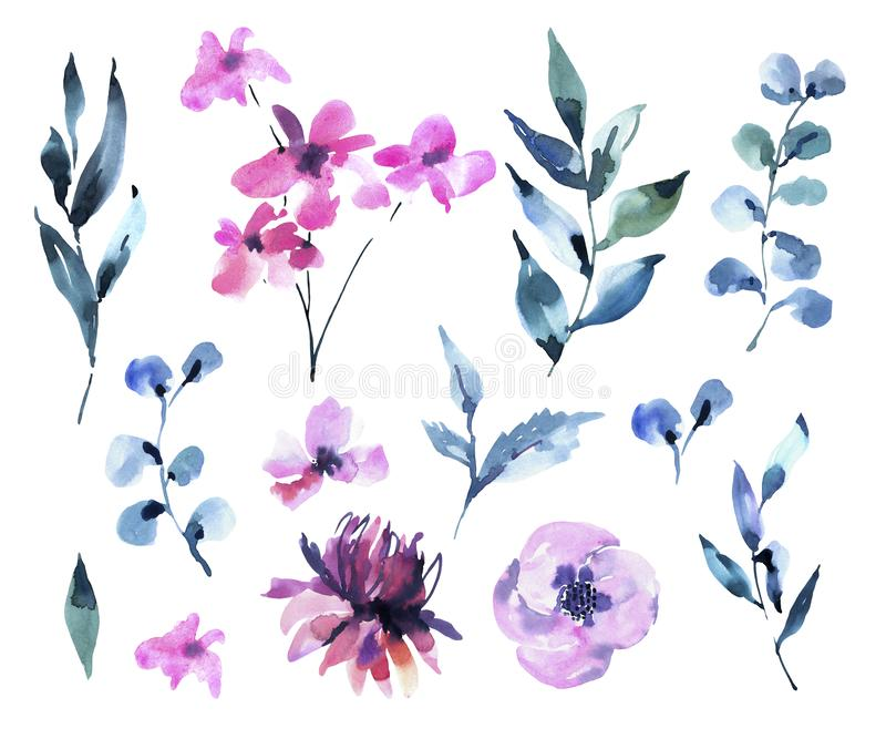 Set of Watercolor Vintage Magenta Flowers, Wildflowers. Natural Pink Floral Objects isolated on White Background vector illustration