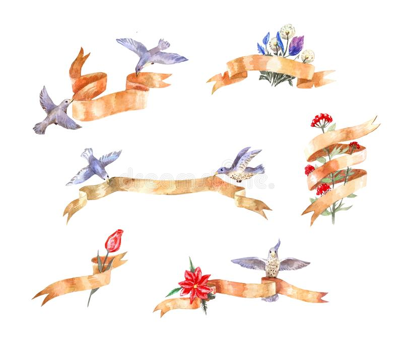 Set of watercolor vintage ribbons with birds and flowers vector illustration