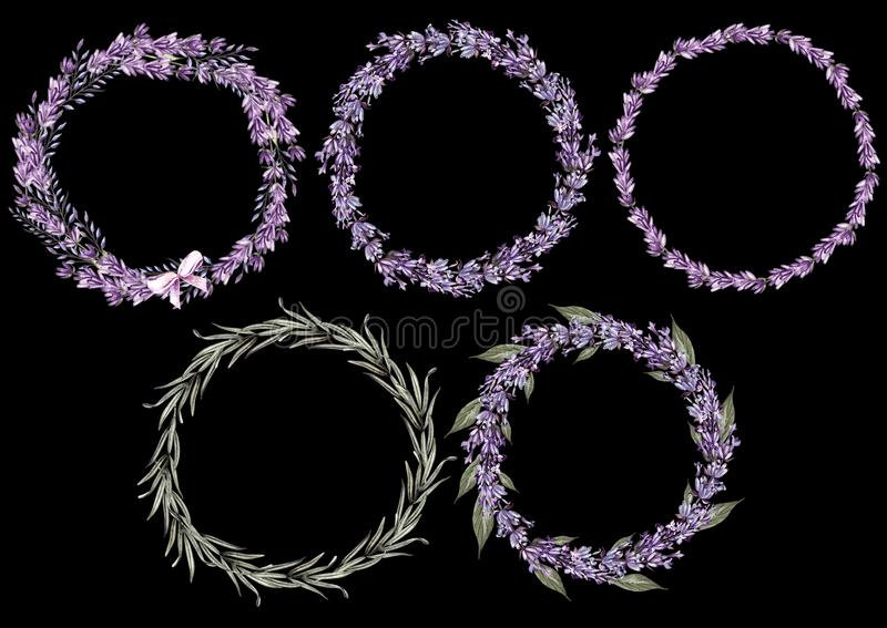 Set of 5 watercolor wreath lavender flowers on white background. royalty free stock image