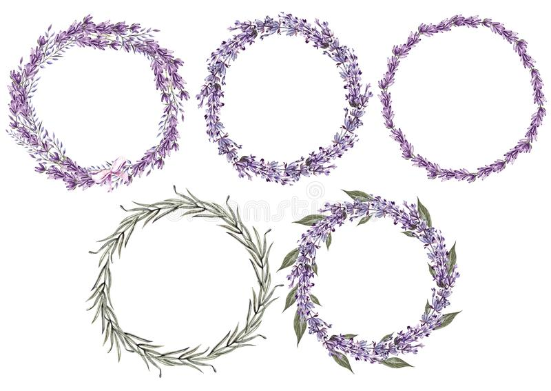 Set of 5 watercolor wreath lavender flowers on white background. Illustration royalty free illustration