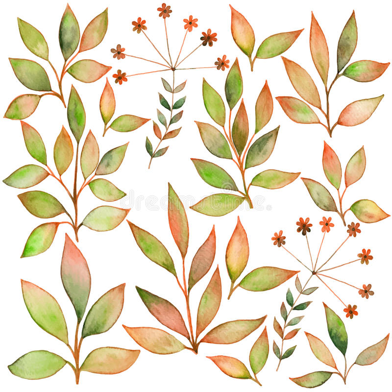 Set of watercolors leaf . Elements for your design. Leaves theme stock illustration