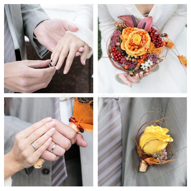 Set Of Wedding Photos Royalty Free Stock Photos