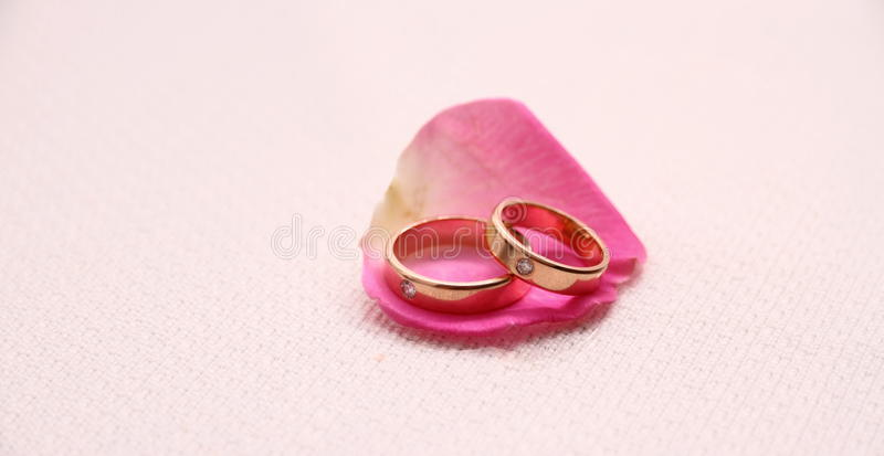 Set of wedding rings on pink rose petal royalty free stock photography
