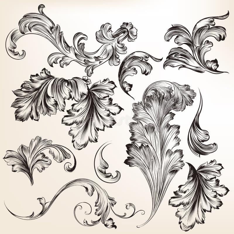 Set wektorowa ręka rysujący zawijas rozkwita dla projekta royalty ilustracja