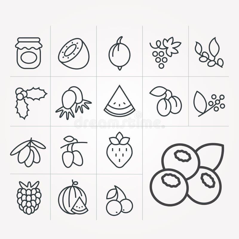 Set wektorowe ikony z jagodami royalty ilustracja