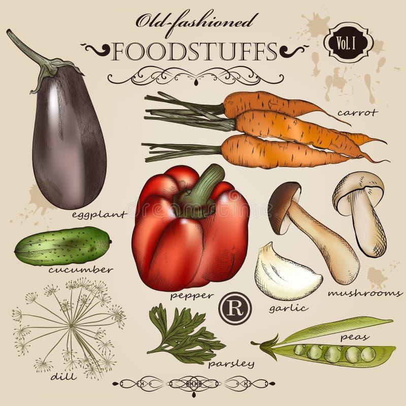 Set wektorowi staromodni warzywa i żywność dla projekta ilustracja wektor