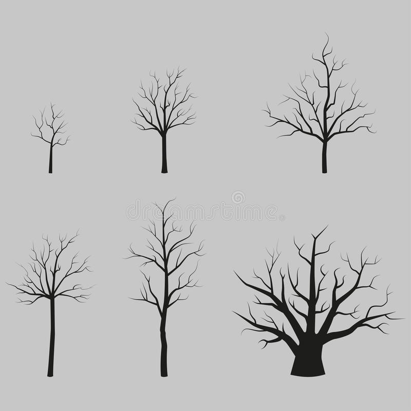 Set wektorowych drzew czarne sylwetki bez liści royalty ilustracja