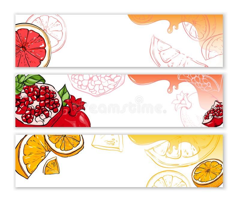 White banners with exotic fruits. stock illustration