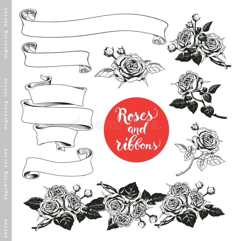 Set of white roses and ribbons in vintage engraving style. Baroque decorative elements. Floral doodles, leaves, branches, flowers, banners. Good for Save the royalty free illustration