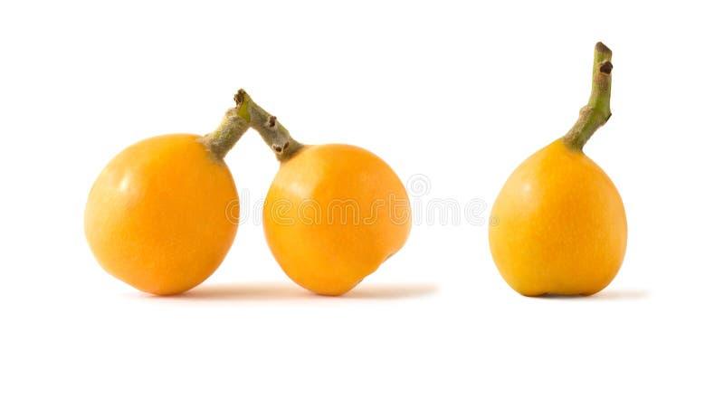 Whole loquat or medlar yellow fruits isolated stock photography