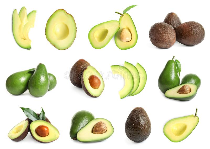 Set with whole and sliced avocados royalty free illustration