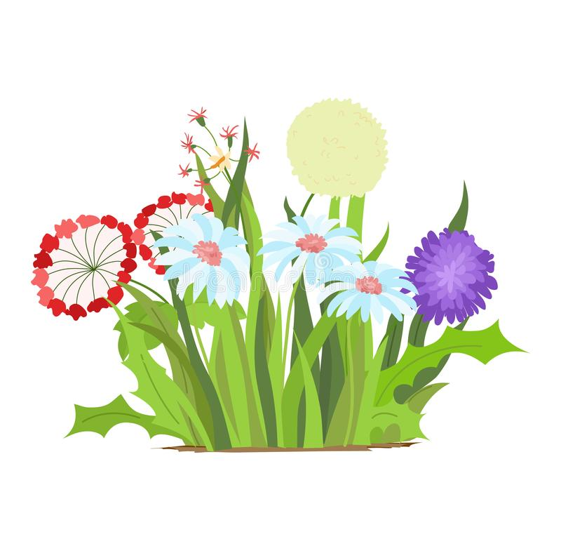Set of wild forest and garden flowers. Spring concept. Flat vector flower illustration isolate on a white background. Set of wild forest and garden flowers stock illustration