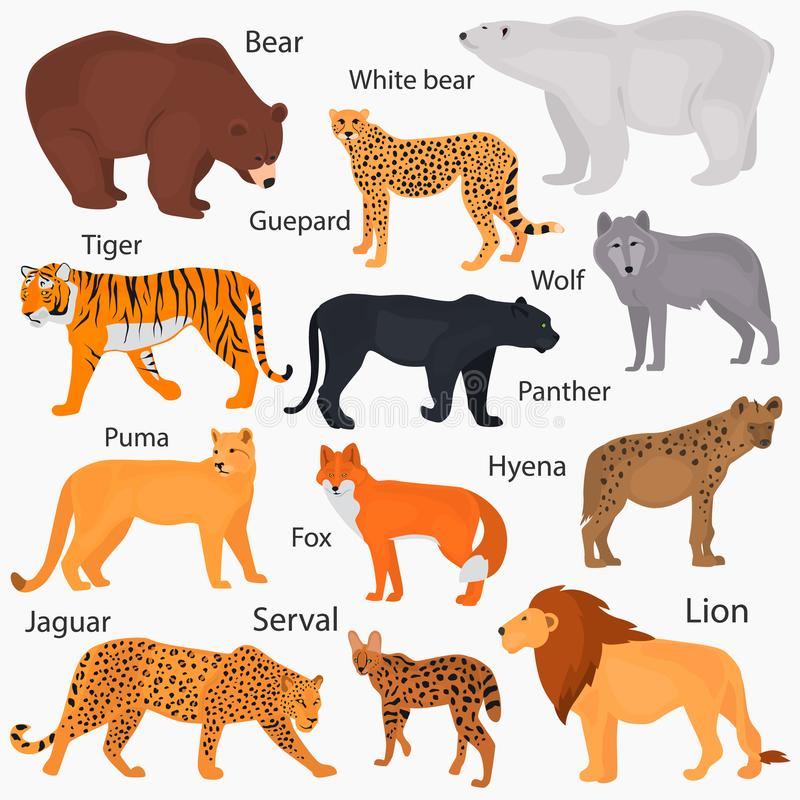 Set of wild predators with their names color flat icons. Set of wild predators with their names color icons stock illustration