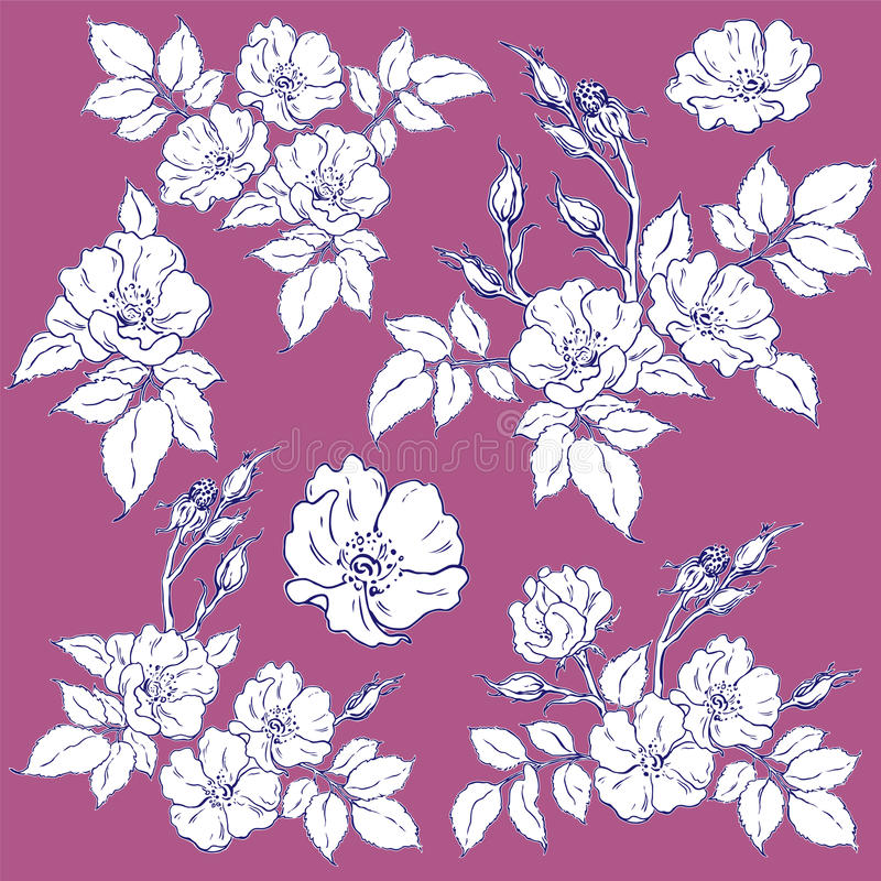 Download Set of wild rose stock vector. Image of leaf, briar, petal - 43267948
