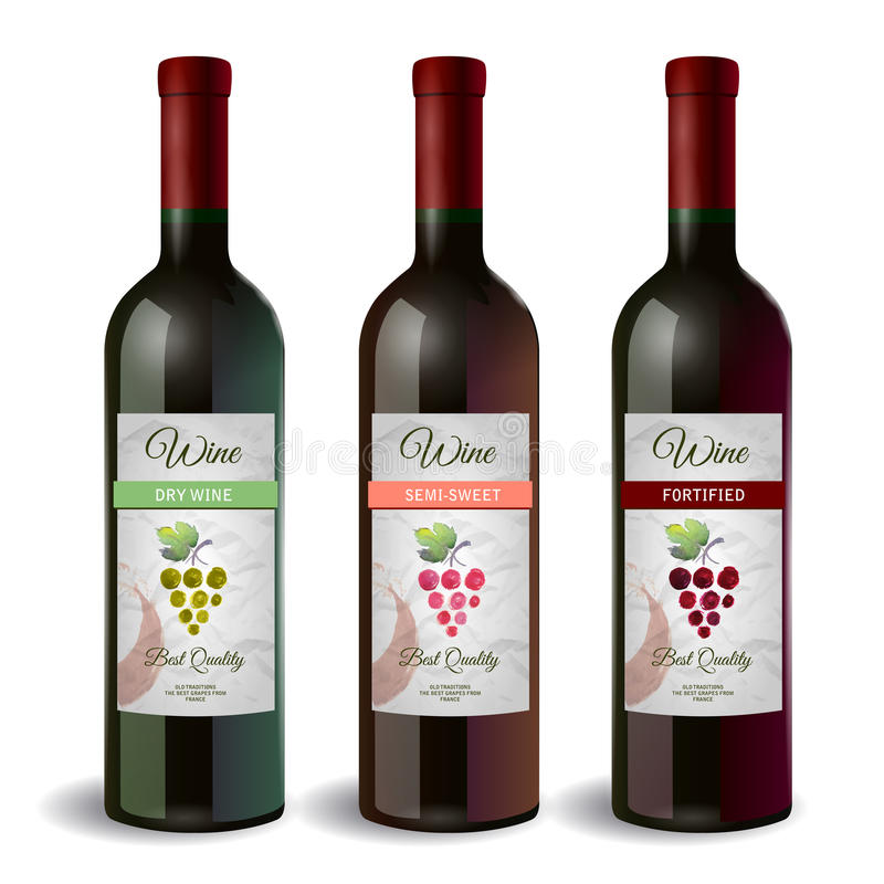 Set of Wine bottle with label. Wine and grapes vector illustration