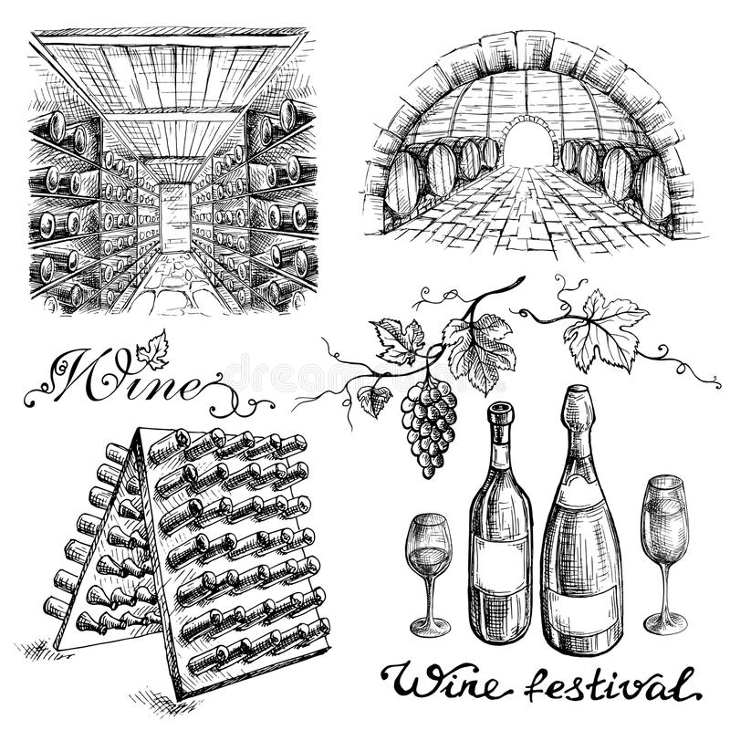 Set of wine bottles and barrels in winery or cellar. In graphic style hand-drawn vector illustration stock illustration