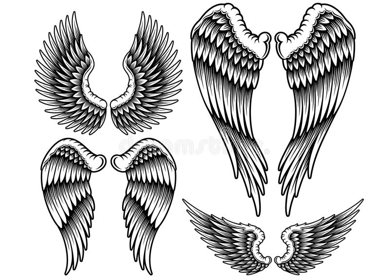 Set of Wings. Fully editable vector illustration set of wings on isolated white background, image suitable for design element on emblem, insignia or tattoo