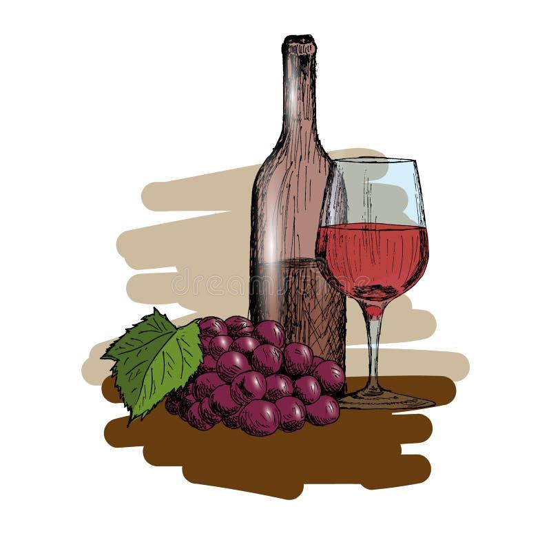 Set wino Szkło, butelka i wiązka winogrono rocznika ręka Rysująca, Kreślimy Wektorową ilustrację ilustracji