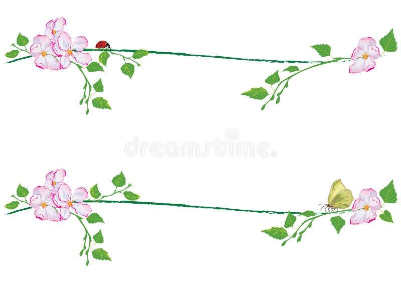 Set wiosen dividers ilustracji