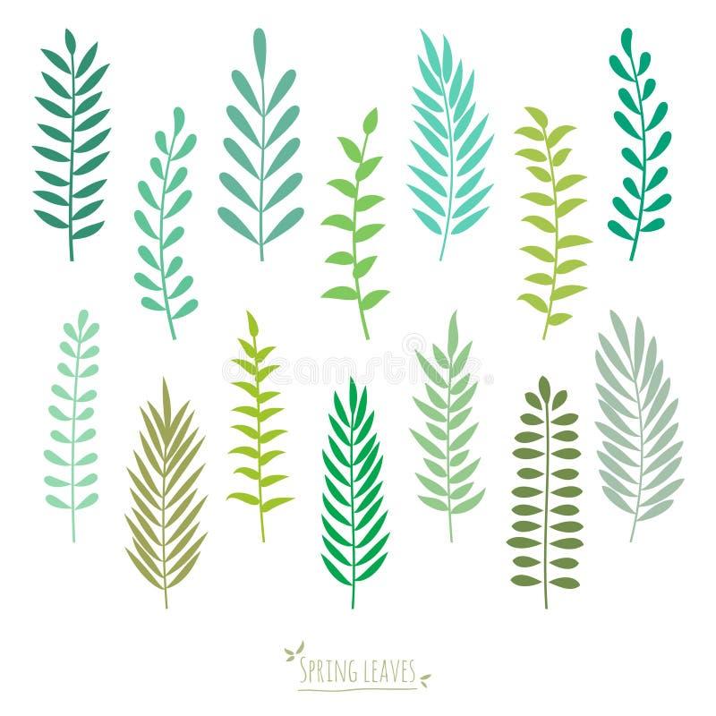 Set wiosny zieleni liście. ilustracji