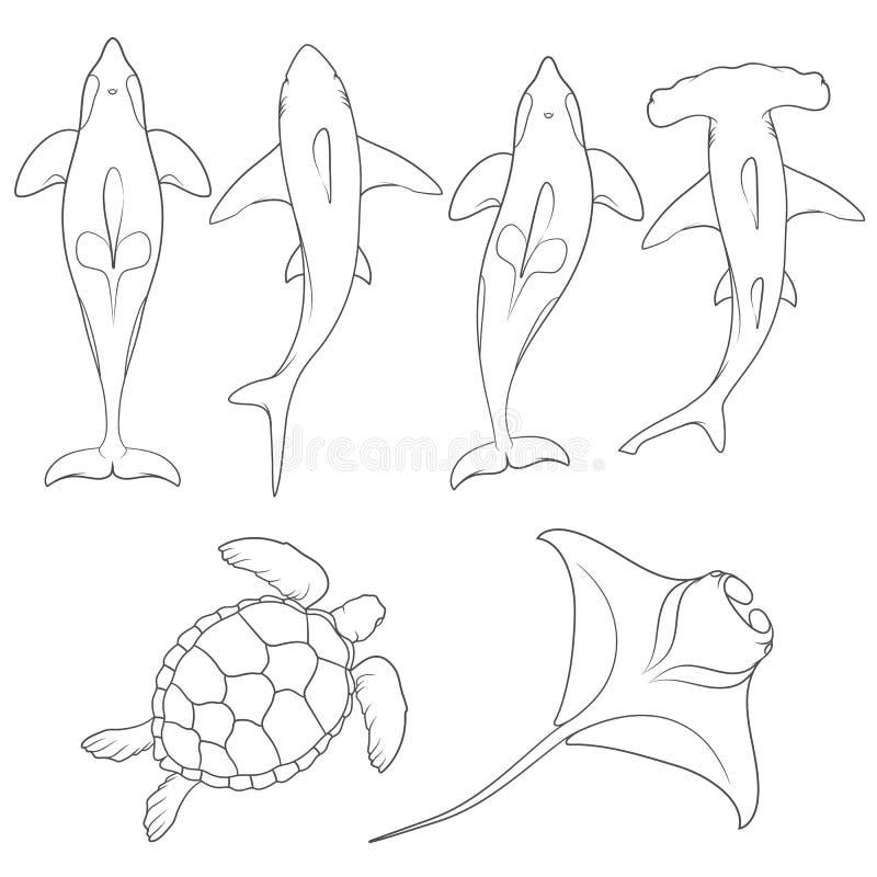 Set wizerunki z morskimi zwierzętami ilustracji