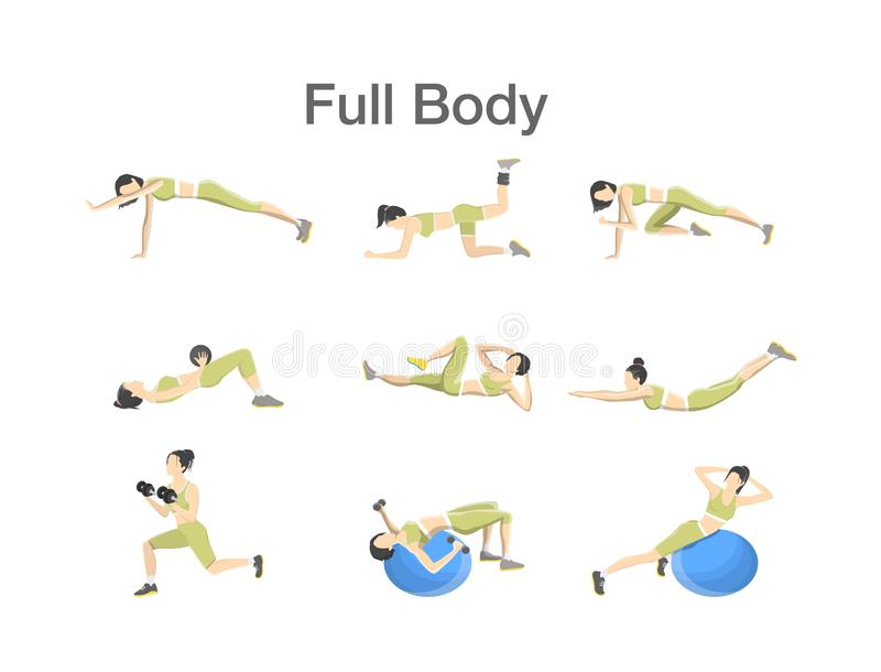 Set of woman doing exercises in the gym. Full body workout with dumbbell and fitness ball for different groups of muscles. Isolated flat vector illustration vector illustration