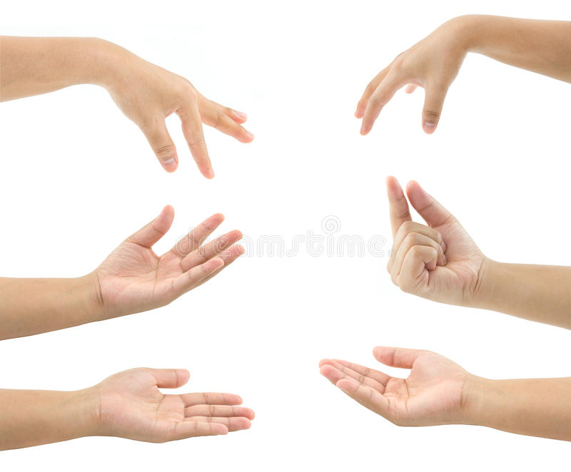 Set of woman hand stock image