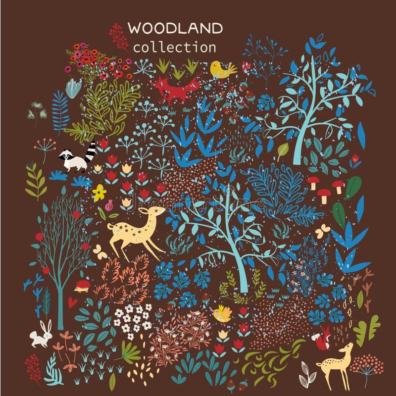 Set of woodland elements royalty free illustration
