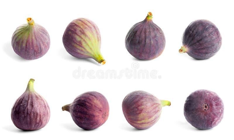 Set wyśmienicie dojrzałe figi zdjęcie stock