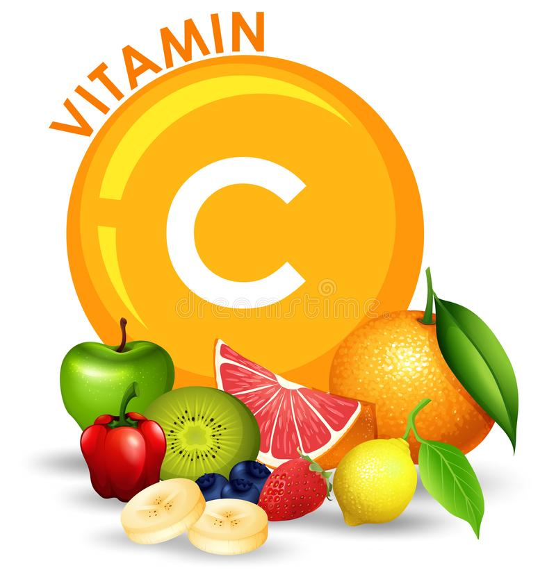 Set Wysoka witaminy C owoc ilustracja wektor