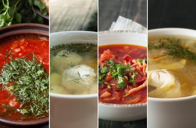 Set z różnymi wyśmienicie ćwikłowymi polewkami Kulinarni przepisy zdjęcie stock